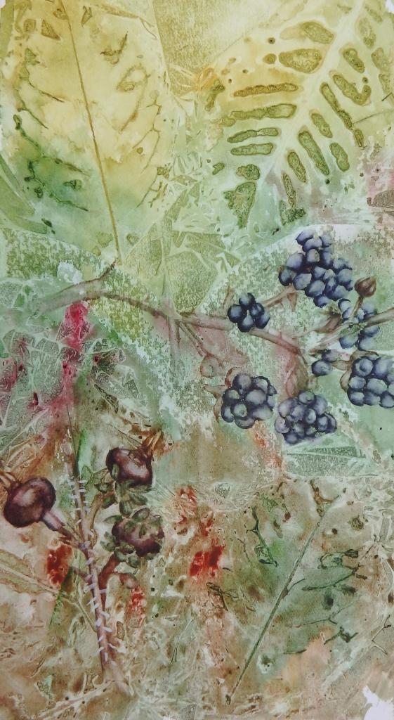 Berries - watercolour